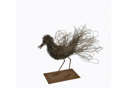 Uccellaccio